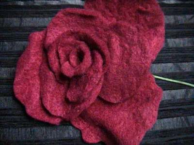 rose.jpg.95aa7e75632b5f76c0f9b83c092d75b1.jpg