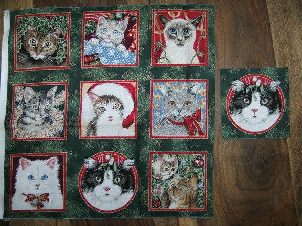 Katzen für Christine
