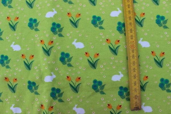 K17: Jersey Bunny grün Eigentümer: littlelursa 160 x 125 => 2,00 m²