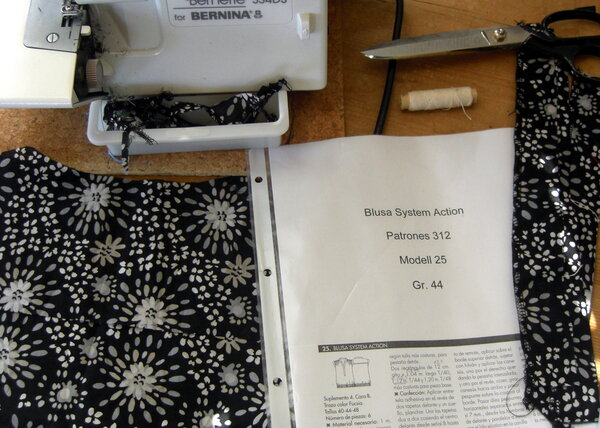 Blusa System Action in Progress