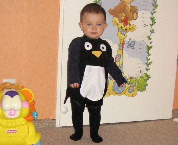 der kleine Pinguin