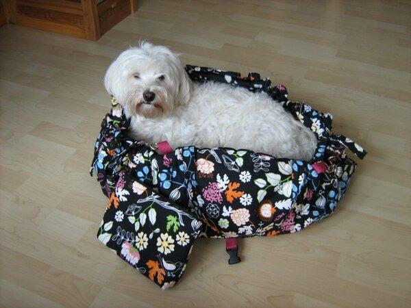 Paulas neues Taschenbett - mit Inhalt