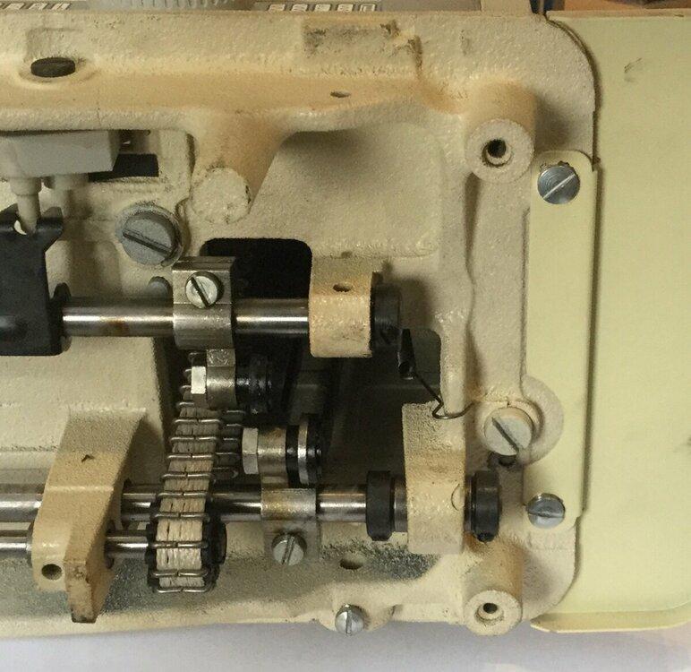 2C735C5F-94D9-499E-93F7-A3A1E339C8D0.jpeg